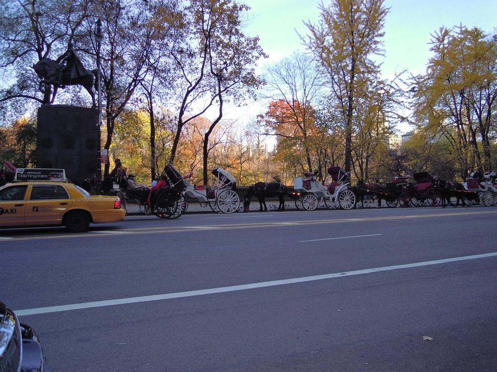 セントラルパーク前の馬車